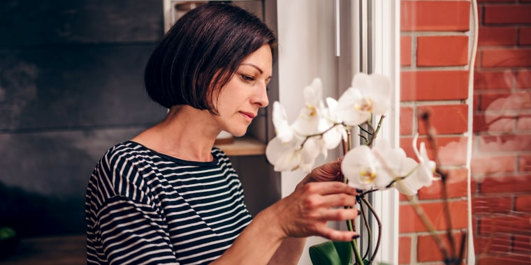 The first step? Figure out which type of orchid you have.