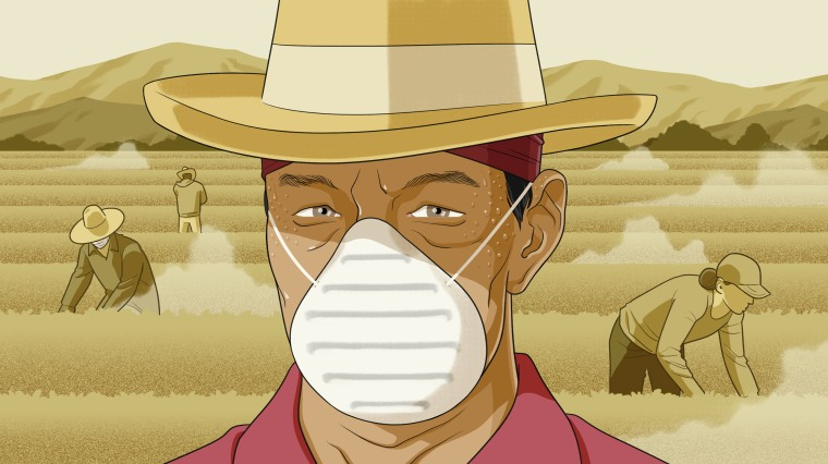 Illustration of a farm worker wearing a mask and sweating in the heat of a dusty, California farm.
