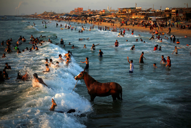 Image: Palestinian man washes his horse in the waters of the Mediterranean Sea as people swim on a hot day in the northern Gaza Strip