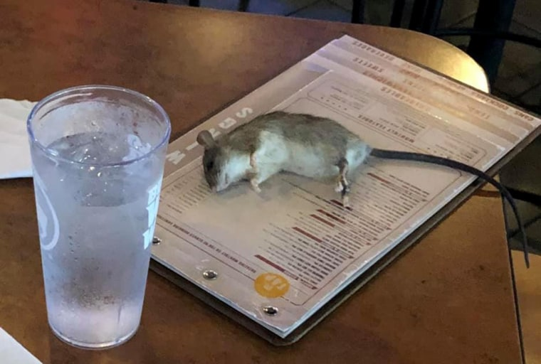 Image: A rat allegedly fell from a ceiling at Buffalo Wild Wings in Westchester, California.