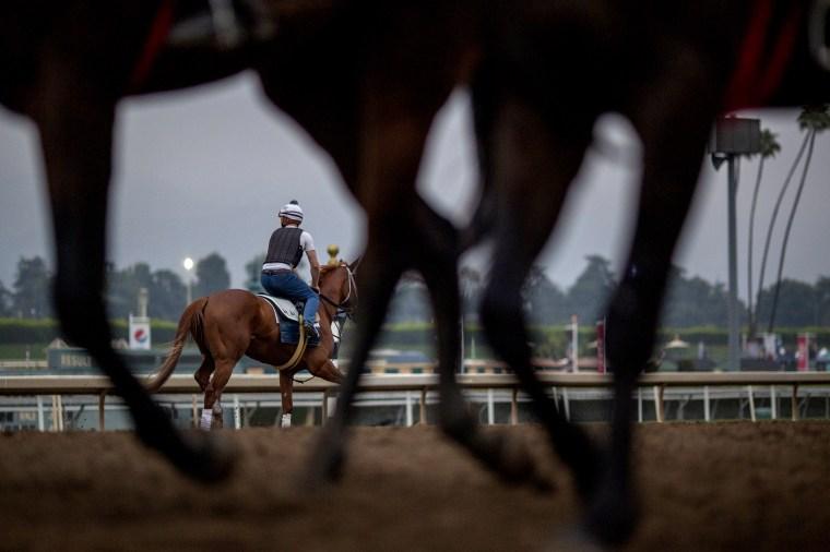 Image: Race horses during morning workouts at Santa Anita Park in Arcadia, California, on June 15, 2019.