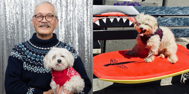 Vince Louie, 76, and his senior dog, Monte, met in 2018 at Muttville Senior Dog Rescue's Cuddle Club in San Francisco, California.