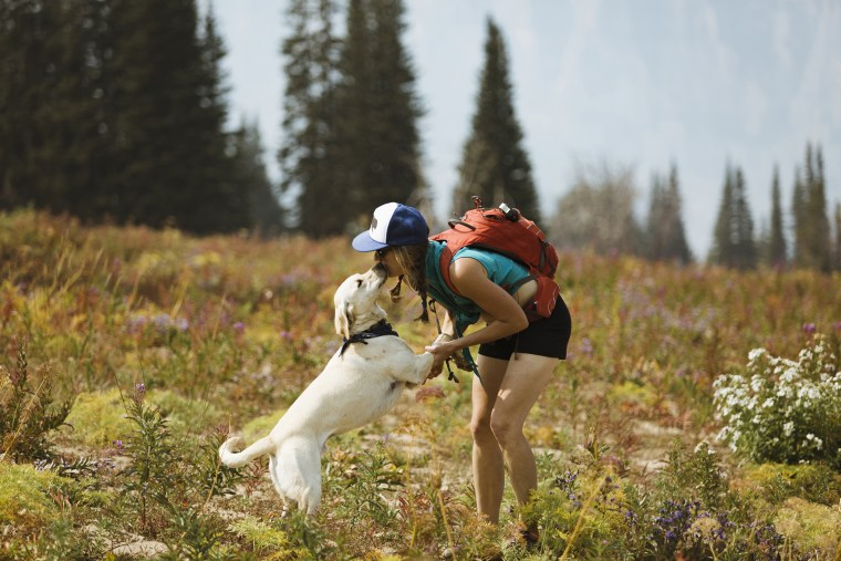 Image: Woman with backpack kissing dog while standing on field