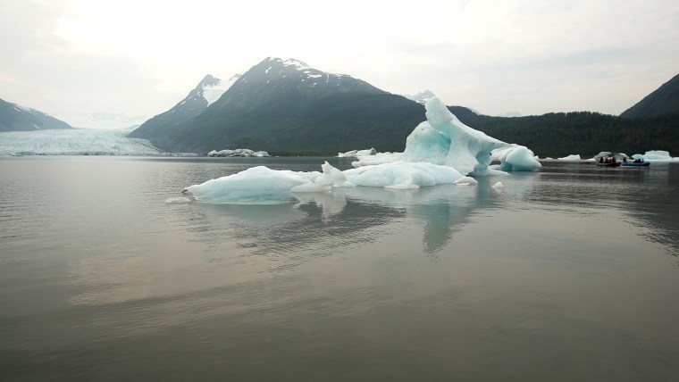 Icebergs float in a glacial lake, which didn't exist in 1950 - now visitors must kayak a mile to reach the glacier.