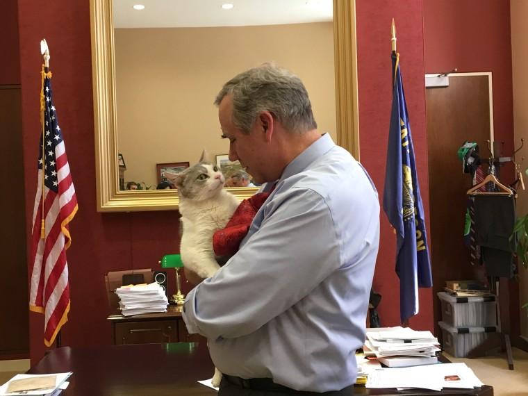 Image: Sen. Jeff Merkley meets Delilah the cat
