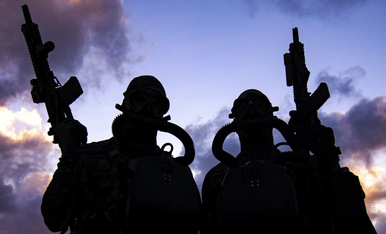 Image: U.S. Navy SEALs