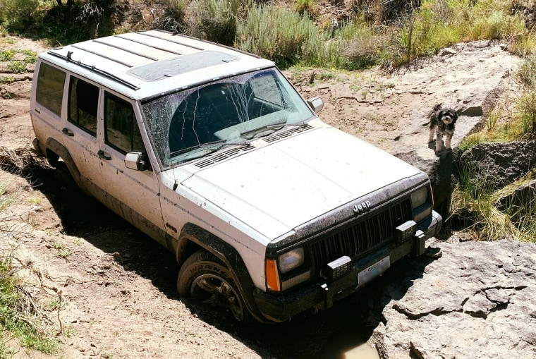 "The terrifying ordeal began July 14 when Greg Randolph's Jeep got stuck in a canyon. Authorities said he attempted to walk to get help but collapsed with one of his two dogs ""faithfully by his side."""