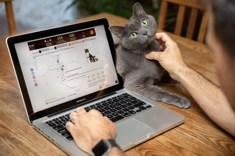 A cat poses next to a laptop with the community lifesaving dashboard open.