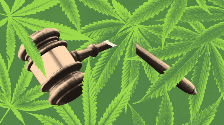 Illustration of a broken gavel on a pattern of hemp leaves.