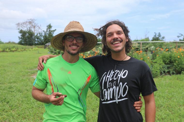 Antonio and Francisco Castro grow tobacco on the HidrOrgánica farm in Rio Grande, Puerto Rico.