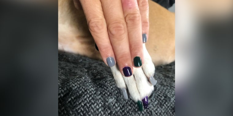 "Doggy nail ""pawlish"" for the win!"