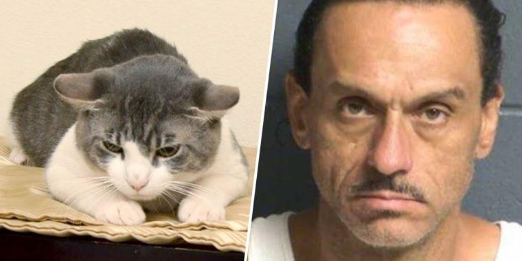 Image: Aaron Spaulding is accused of force-feeding his cat methamphetamines.