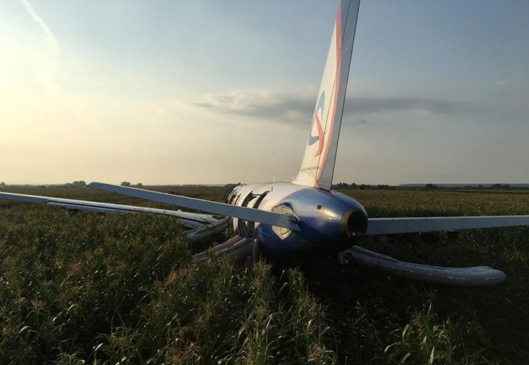 The Ural Airlines Airbus 321 passenger plane sits in a field following an emergency landing near Zhukovsky International Airport in Russia on Aug. 15, 2019.