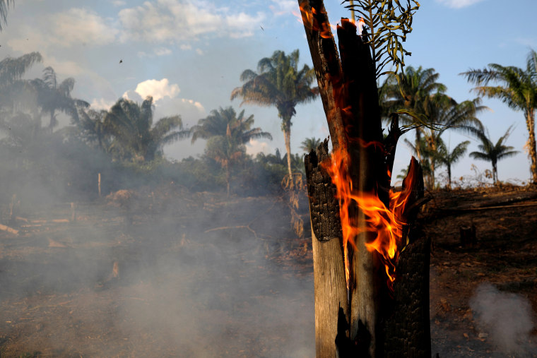Image: A tract of Amazon jungle is seen burning as it is being cleared by loggers and farmers in Iranduba