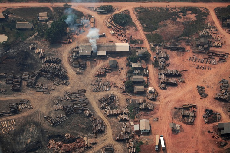 Image: An aerial view of logs illegally cut from Amazon rainforest are seen in sawmills near Humaita