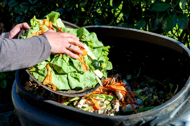 Image: composting kitchen waste