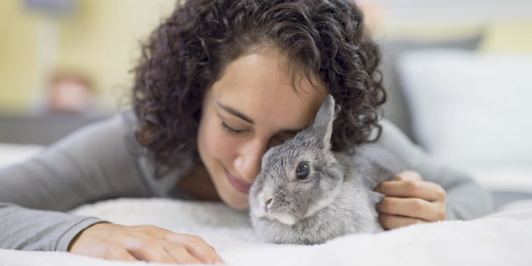 "The ""rabbit effect"" -- how the social world impacts health -- has a powerful effect on humans, too, doctors say."
