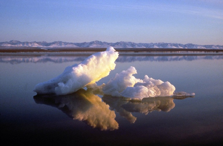 FILE PHOTO: Sea ice floats within the 1002 Area of the Arctic National Wildlife Refuge