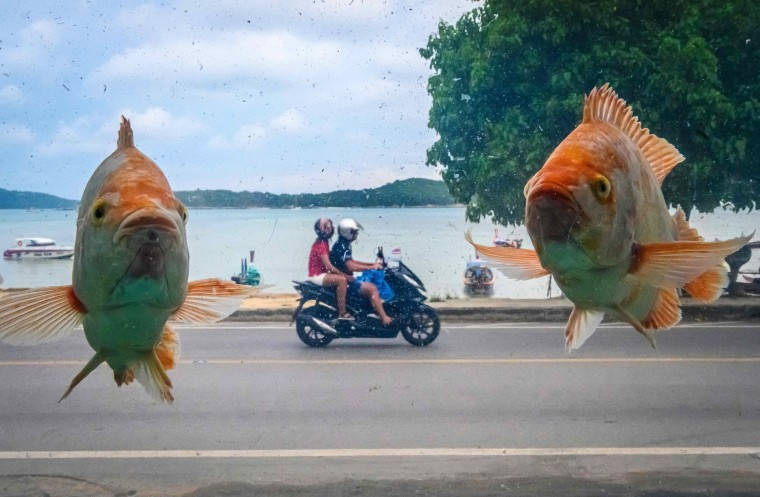 Image: THAILAND-TOURISM
