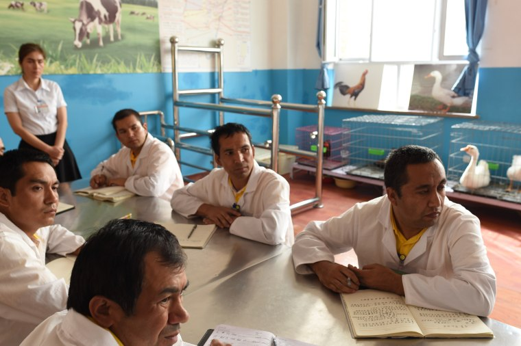 Image: Uighurs attend a class at Moyu County Vocational Education and Training Center.