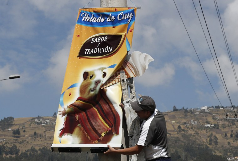 """Image: A worker installs a banner promoting """"helado de cuy"""" or guinea pig ice cream"""