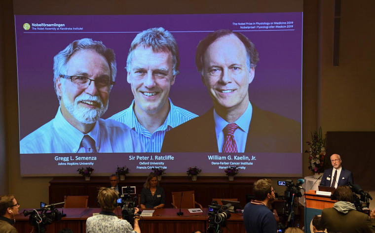 Image: Winners of the 2019 Nobel Prize in Physiology or Medicine (L-R) Gregg Semenza of the U.S., Peter Ratcliffe of Britain and William Kaelin of the U.S.