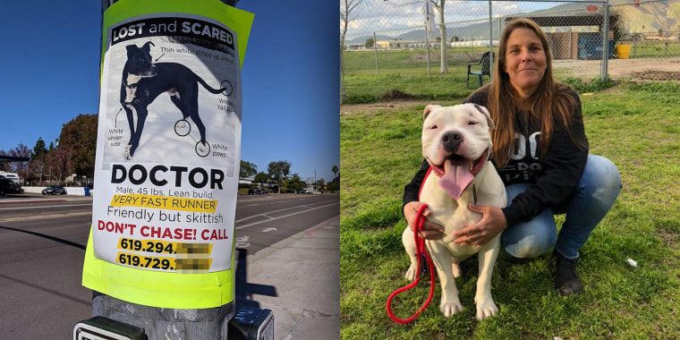 Babs Fry, a realtor in San Diego, helps reunite people with their lost pets, particularly dogs. While most cases are local, some involve missing animals in other states or even other countries, like Canada and Australia.