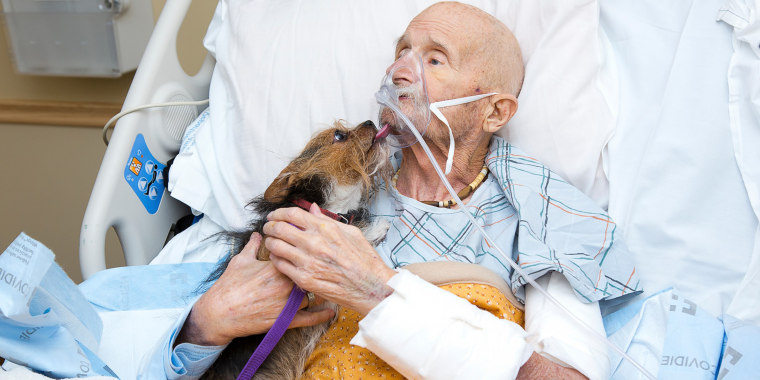 Vietnam veteran John Vincent holds his dog, Patch, during a visit in hospice care.