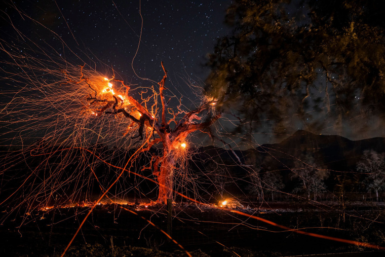 Image: A long exposure photograph shows a tree burning off Highway 128, east of Healdsburg, California