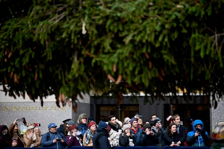 Image: Spectators watch as the Rockefeller Center Christmas tree is raised in New York on Nov. 9, 2019.