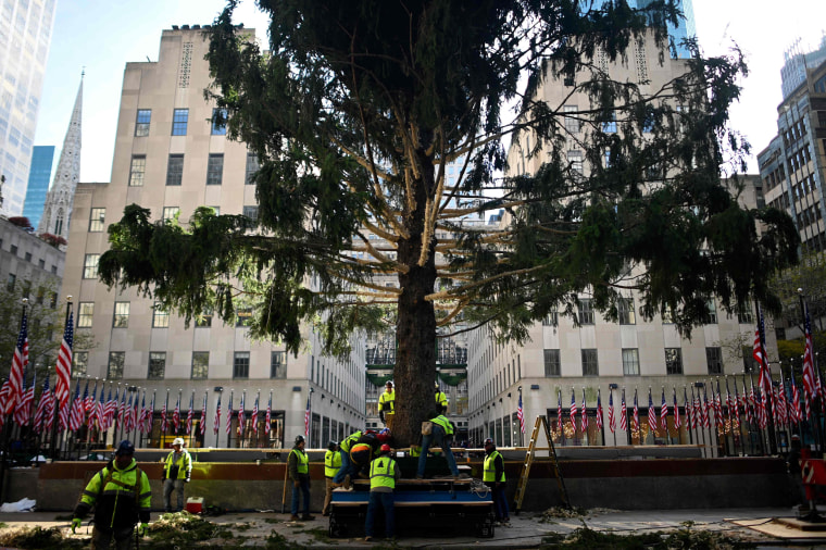 Image: Workers raise the Rockefeller Center Christmas tree in New York on Nov. 9, 2019.