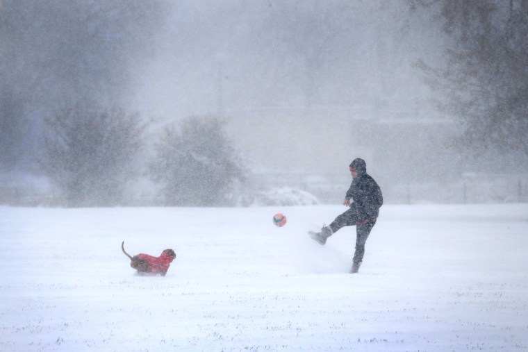 Image: A resident plays with his dog as snow falls in Humboldt Park on Nov. 11, 2019 in Chicago, Illinois.