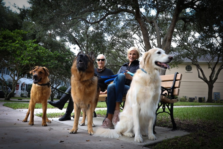 Mika Brzezinski with her mom, Emilie, and their family dogs Scout, Cajun and Daisy.