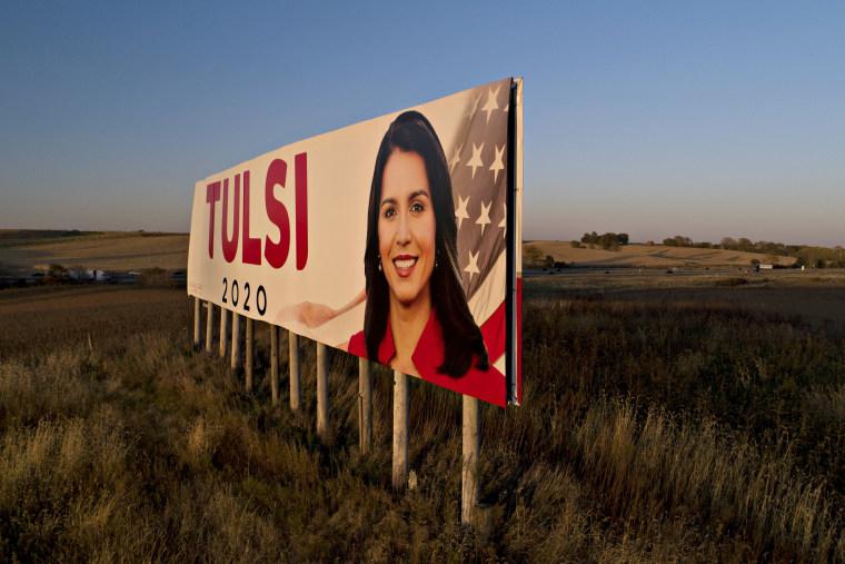 Tulsi Gabbard Campaign Signs In Iowa