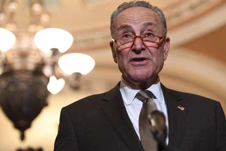 Image: Senate Democratic Leader Chuck Schumer speaks during a press conference at the Capitol