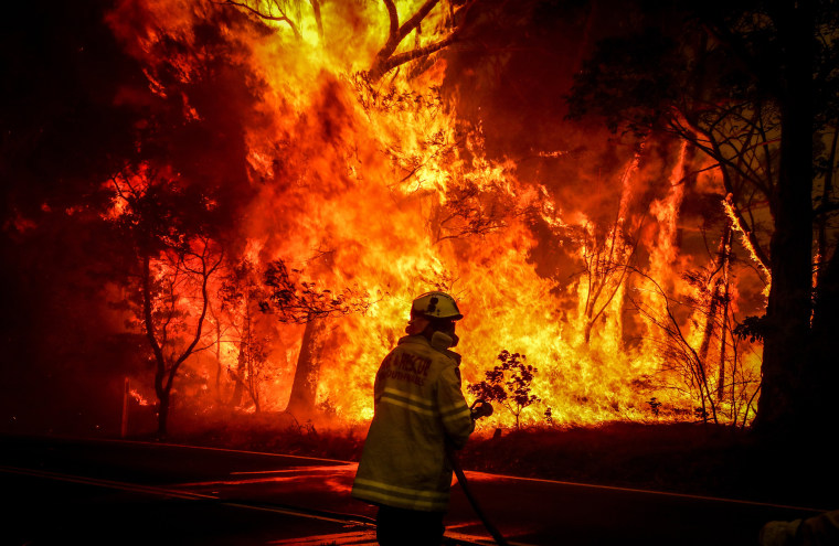 Image result for australian fires