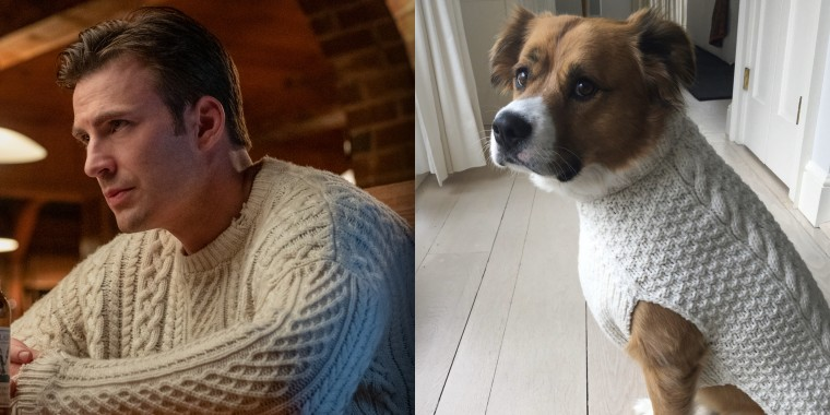 "For much of the movie ""Knives Out,"" Chris Evans rocks a cable knit sweater. Now, his dog has one too!"