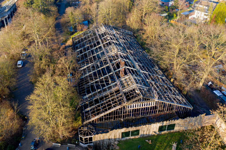Image: Dozens of animals, including orangutans, chimpanzees and marmosets, were killed when an ape house caught fire at Krefeld Zoo in Germany on Jan. 1, 2020.