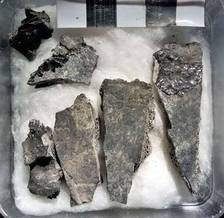 Image: Bone Fragments