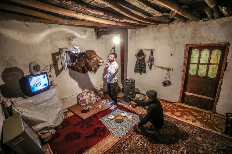 Shepherd brothers raise champion camels in Turkey's Van