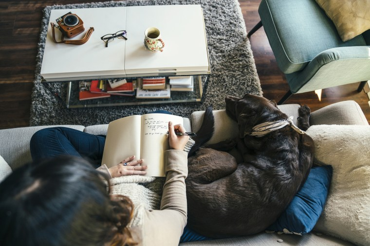 Mixed Race woman on sofa with dog writing in journal