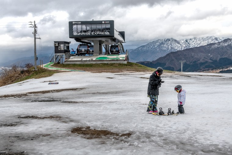 Image: Japan's Lack Of Snow Hits Ski Season