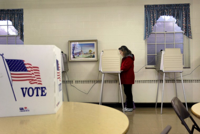 Image: Voting in Michigan