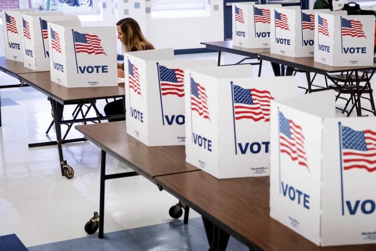 Image: Super Tuesday voting in Arlington, Virginia