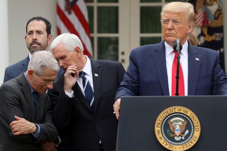 Image: President Trump declares coronavirus pandemic a national emergency during news conference at the White House in Washington