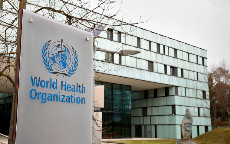 Image: FILE PHOTO: A logo is pictured outside a building of the WHO in Geneva