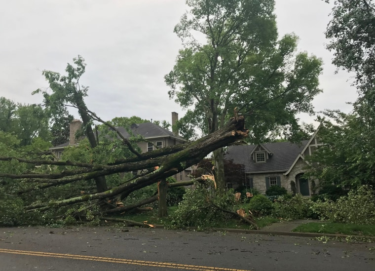 A broken tree in Nashville after a round of severe weather hit the region on May 3, 2020.