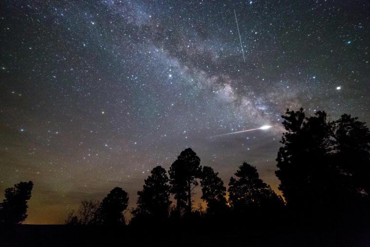 An Eta Aquarid meteor exploding over pine trees on the Coconino Rim along the Arizona Trail. Kaibab National Forest, Arizona