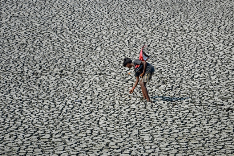 Image: A young man walks on he parched bed of a temple tank during a hot day in Chenna