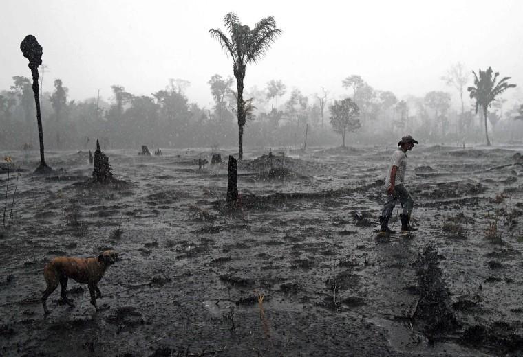 Image: Brazilian farmer Helio Lombardo Do Santos and a dog walk through a burnt area of the Amazon rainforest, near Porto Velho, Rondonia state, Brazil